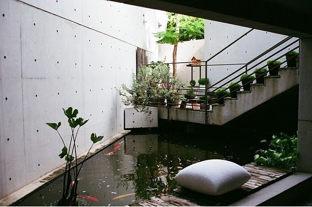 Amazing Indoor Fish Pond To Upgrade Your House 23