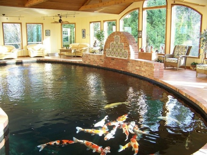 Amazing Indoor Fish Pond To Upgrade Your House 53