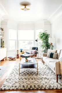 Best Rug To Decor Your First Living Room 36