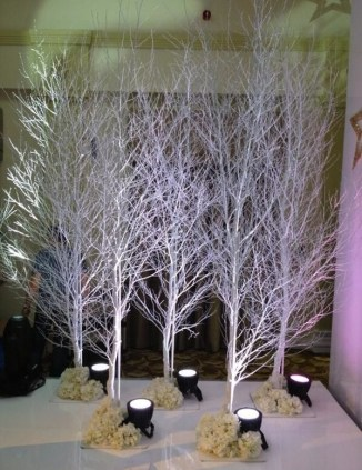 Adorable Winter Wedding Ideas For Decorate Your Party 26