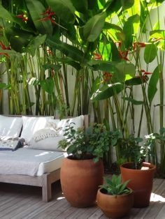 Beautiful Tropical Outdoor Decoration For Cozy Place 09