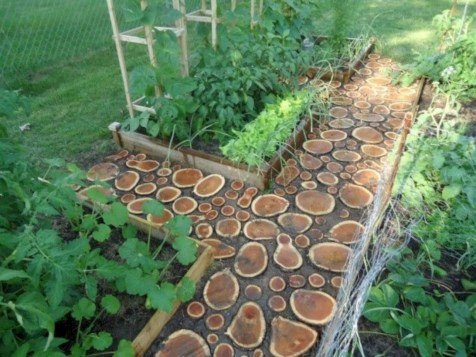 Best Materials You Will Need To Create A Charming Garden Pathway 09