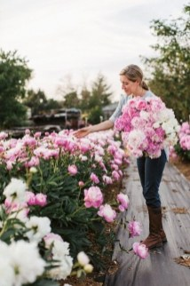 Tips For Growing Spring Flower You Can Try 34