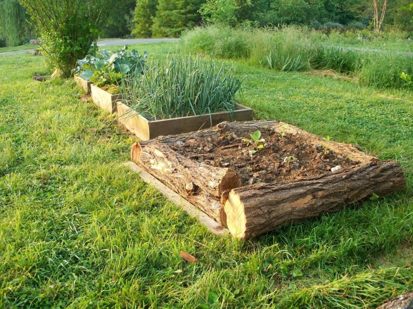 Coolest DIY Garden Bed Planner 32