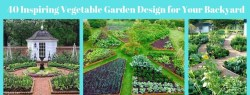 40 Inspiring Vegetable Garden Design for Your Backyard