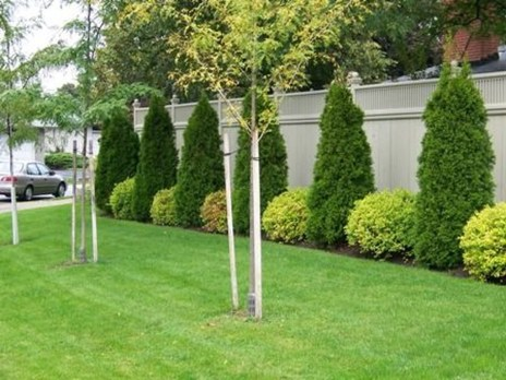 Gorgeous Garden Fences To Beautify Your Backyard 09