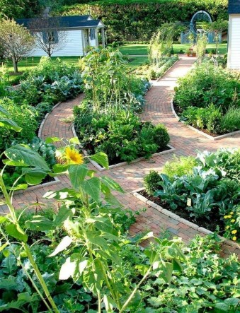 Inspiring Vegetable Garden Design For Your Backyard 02