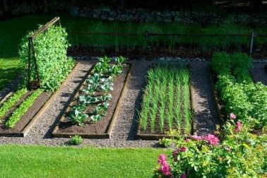 Inspiring Vegetable Garden Design For Your Backyard 04