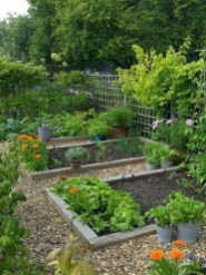 Inspiring Vegetable Garden Design For Your Backyard 13