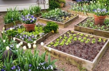 Inspiring Vegetable Garden Design For Your Backyard 17