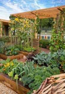 Inspiring Vegetable Garden Design For Your Backyard 26