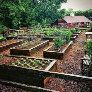 Inspiring Vegetable Garden Design For Your Backyard 27