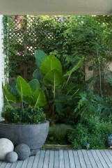 Small Courtyard Design With Some House Plants 02