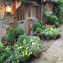 Small Courtyard Design With Some House Plants 11