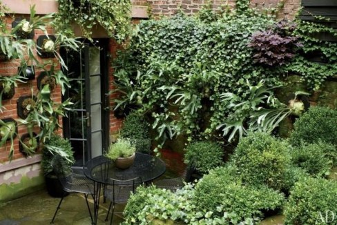 Small Courtyard Design With Some House Plants 12