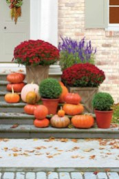 Fabulous Fall Decoration In Your House Decoration 27