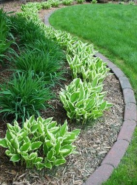 Incredible Edging Garden For Your Front Yard 08