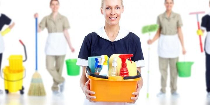 Vaskehjelp tjenester