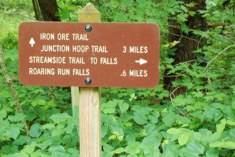 We chose the the Streamside Trail to the falls.
