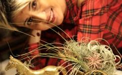 Bitkileri Heykele Dönüştürüyor…