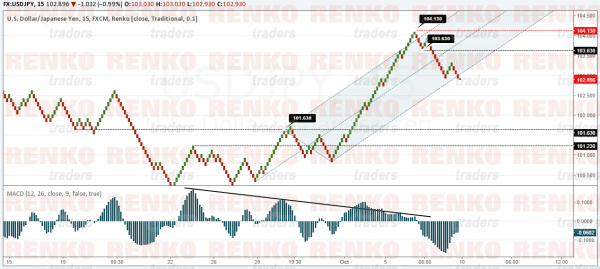 USDJPY could see a correction towards 101.63 – 101.23