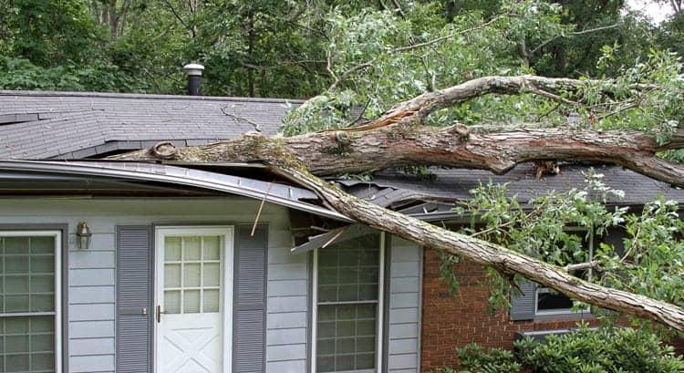 Storm Damage Repair Columbia South Carolina