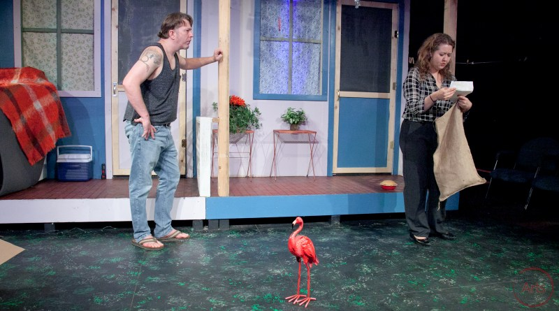 Backstage Review: 'Maytag, Virgin' at Restless Artist Theater