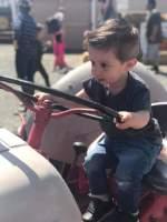 Andelin Family Farm: Baby Animal Days