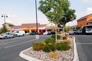 Commercial Landscape Management