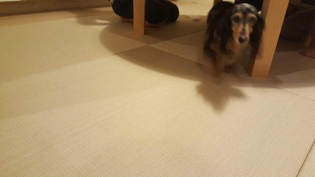 置き畳 DIY