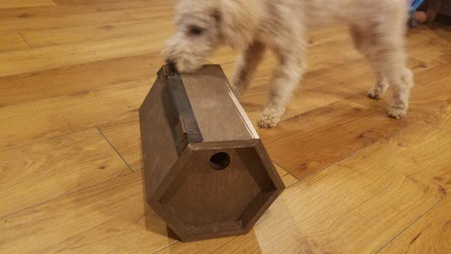 鳥の巣 DIY