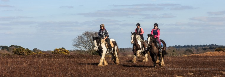 ISO 100, F9, 1/250 sec - Horse Riders in the Forest - the perfect number and colouring :)