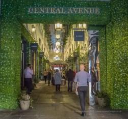 Central Avenue - Convent Gardens