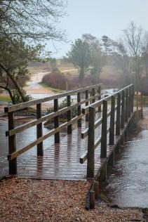 40 / 366 Ober water at Brockenhurst