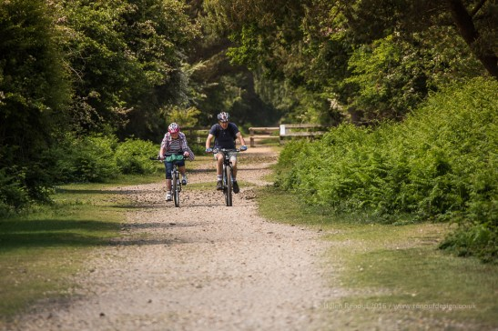 The New Forest - great leading line and Cyclist to focus on.