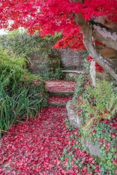 The amazing gardens full of Autumn Colour