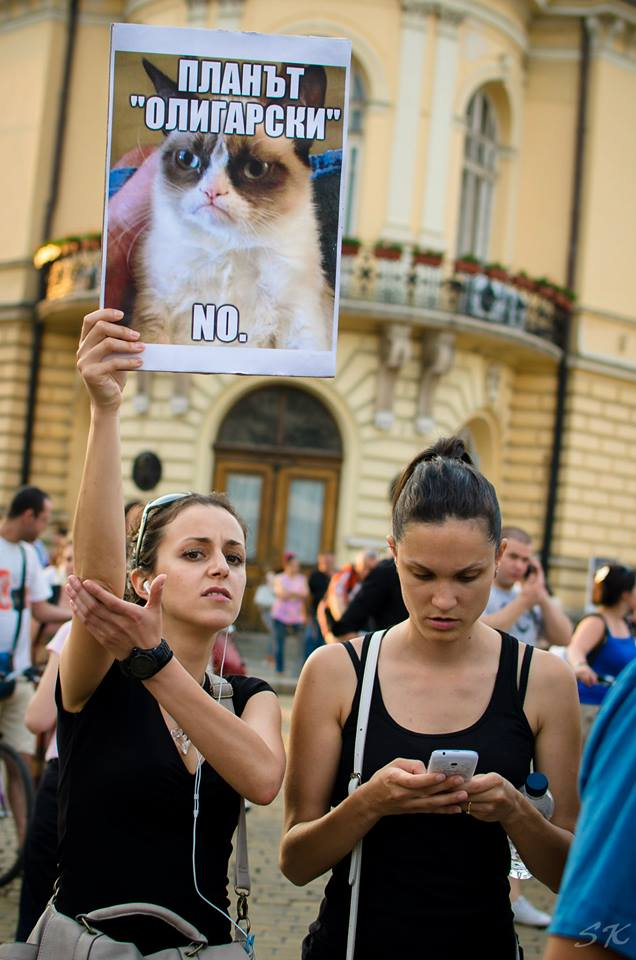 #ДАНСwithme Grumpy cat says no to oligarchs