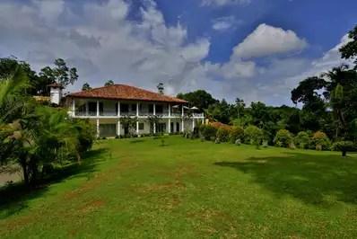 Cassia Hill
