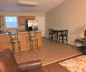 for rent in mountain pine ar