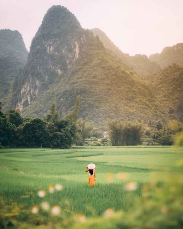 photo of person standing on green grass field