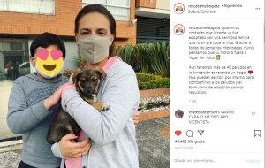 Perro Vicente y su familia