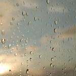 雨の音を聴くとほっとする。ぐっすり眠れた話
