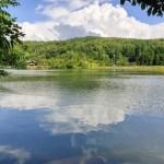 心地よい風!湖を囲む自然散策スポット「大平森林公園」