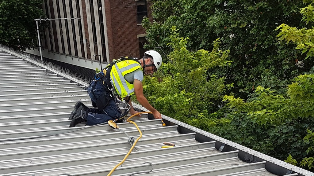 abseiling gutter cleaning hoovering