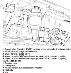 2002 Pontiac Sunfire 22L SFI OHV 4cyl   Repair Guides   Components & Systems   Evaporative
