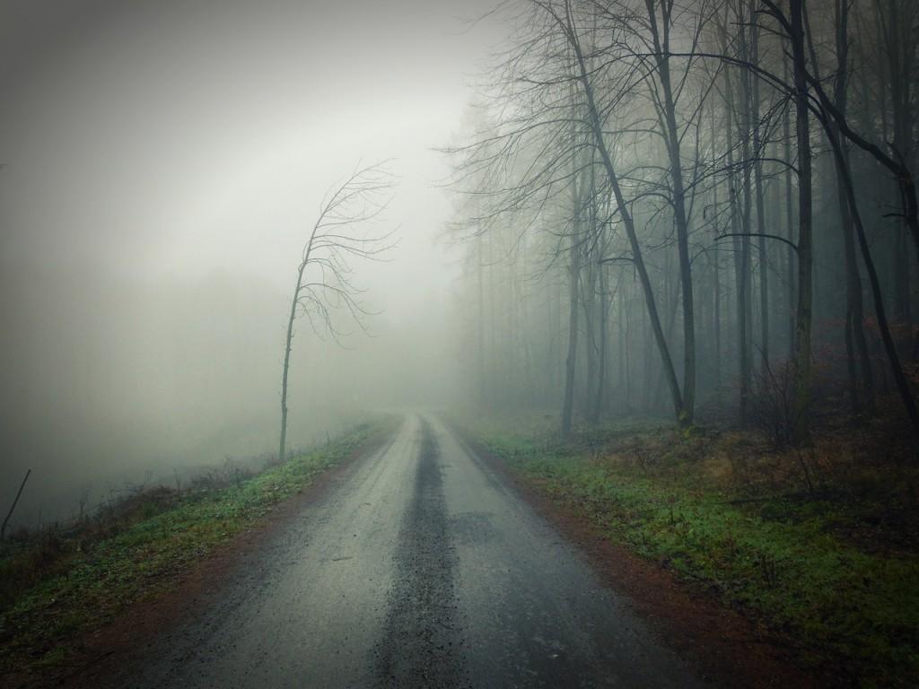 conducir seguro con niebla