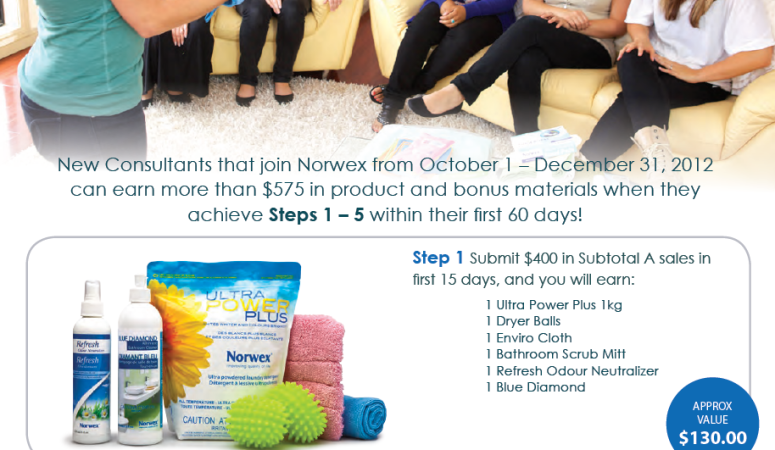 What does it cost to become a Norwex consultant?