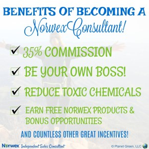 Become a Norwex Consultant!