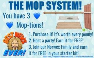 Norwex Mop System