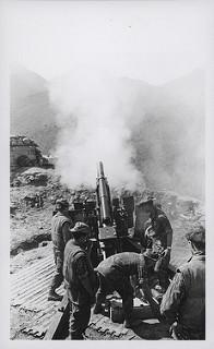 Marines Fire Artillery Support, 1969